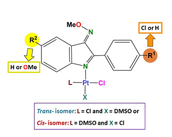 granTrans- and cis-2-phenylindole platinum(II) complexes as cytotoxic